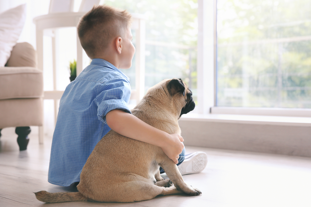Dog and kid watching outside